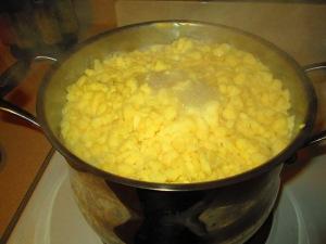 Big pot of haluskis!
